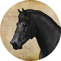 Blackie Horse by AnnieHyena