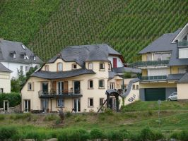 Villa at the river mosel by wollibear