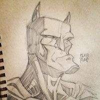 Batman Sketch by plaidklaus