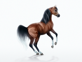 Keira Al Shaqab by feverpaint