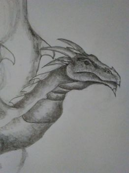 dragon of the copier paper by donaldhoward58