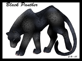 Black Panther by TussenSessan