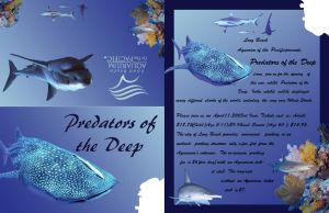 Shark Invite by grace2design