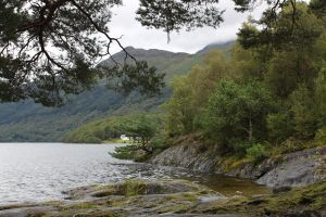 Loch Lomond 13 by Tasastock