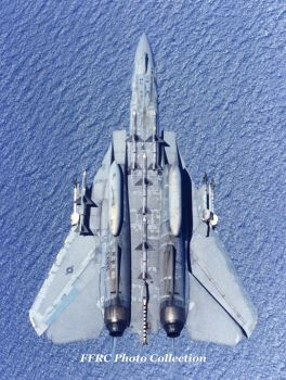 An F-14 displays all of its arsenals for a CAP run by fighterman35