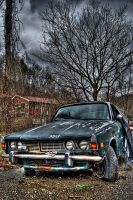 Rover III by Logicalx