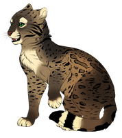 another feline adoptable auction by Searii