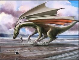 The Splashing Dragon by AndyFairhurst
