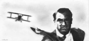 North by Northwest by MrBrowne