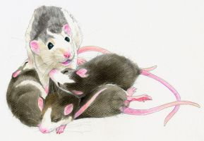 Mother and children of rat by Emushi