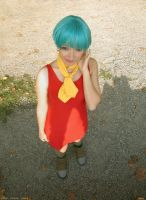 simply Bulma by pallottili