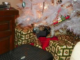 Cat gets into christmas by marriedwithkids