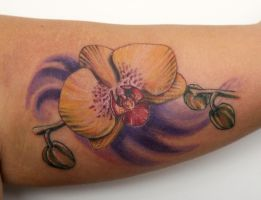 orchid tattoo by graynd