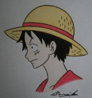 FA4F: Monkey D. Luffy by Alicetiger