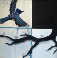 bluejay by 5cris5