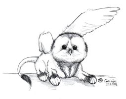 Griphae Owl-chick -EEP- by iluvobiwan91