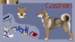 Casshern Reference Sheet by ZombiezEatFlesh