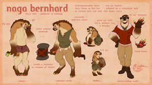 rider ref [HUGE FILE WHOOPS] by aviurs