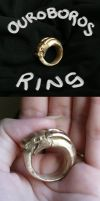 Ouroboros Ring by wings33
