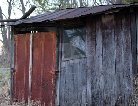Old shed by sapierce567
