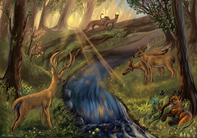 Peacefull place by FlashW