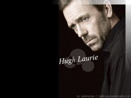 Hugh Laurie Wallpaper by Stephue