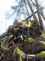 Car Graveyard Forest~ 2/15/2015~7 by Mathayis