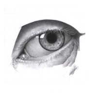 Eye drawing cont. by Tarinz