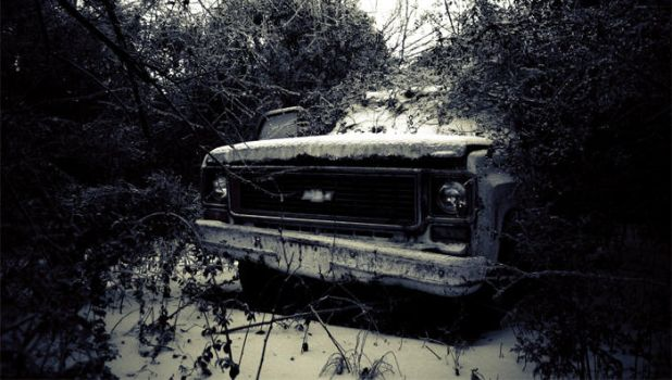 Into the Wild by AnthonyPresley