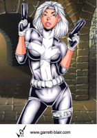 Silver Sable 4 by gb2k by Mythical-Mommy
