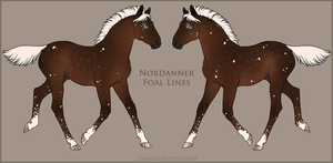 Nordanner Foal #6960 by beauclaire