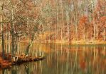 Colors of Fall by Elva-Luthien