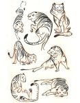 tigers by scrii