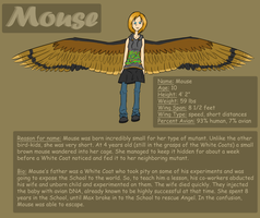 Maximum Ride OC: Mouse by Free-Fall-Angel