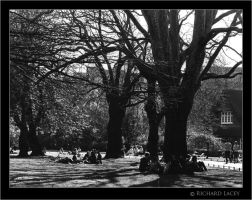 St. Stephen's Green 02 by RichyX83