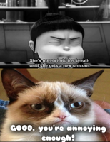 Grumpy cat meme I made.. Lol by xXMahoganystarXx