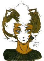 CATS- Admetus by Midniteoil-Burning