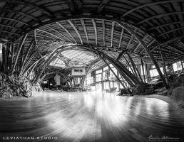 Leviathan Studio - Entrance [BW] by Lasqueti-Ronnie