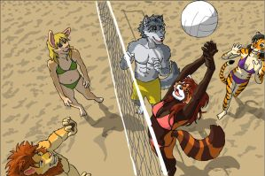 Beach Volleyball by RuntyTiger