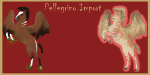 Pellegrino Import for Jumperlady by LiaLithiumTM