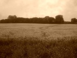 Sepia Landscape by LivingInAMadWorld