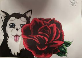 Quick Nigou And Rose by RonaKitten