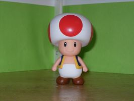 Toad action figure by dylrocks95