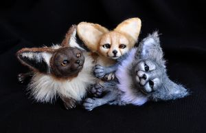 Fennec foxes- sold by LisaToms
