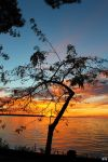 Fall Sunset Series #50 by LifeThroughALens84