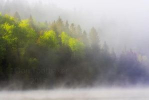 Foggy Morning at the Lake DT7 1593-1 by detphoto