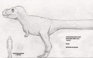 Feathered Tyrannosaurus sketch by Sketchy-raptor