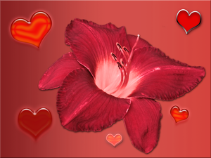 Flower and Hearts Valentine by TheStockWarehouse