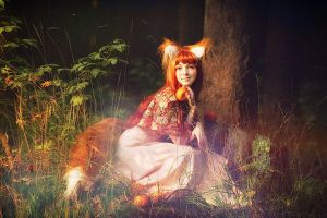 Spice and Wolf by Noka13