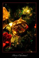 Merry Christmas 06 by Astraea-photography